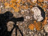 autoportrait sur fond de roches et de lichens