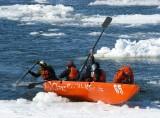 Glaxo embarque sur la glace