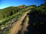 Old PCT trail  near Siphon Lake