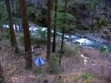 Grider Creek camp near bridge