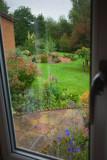 5th September 2008  Grandma's garden