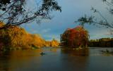 26th October 2007   October light