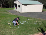 Painting the grass