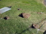Post Holes Dug