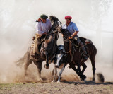 Paleteada and Aparte.. two Argentine horses' sports