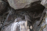 Great-horned Owl roosting in rock cave