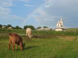Corbasca 11 augustus 2004 015