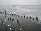 018 - Ankeveense plassen: Hier zie je nog de stuweffecten van de wind in de eerste dagen.