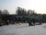 Oostvaardersplassen 004