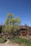 167 - Tirgoviste - 2 April