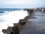 147 - Even Casper got soaken wet by one of these Atlantic waves splashing on the concrete wall...