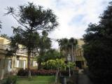 226 - Our good hotel San Borondon in Puerto de la Cruz