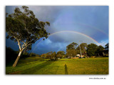 Miscellaneous  shot around Australia