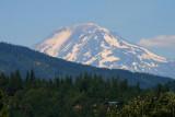 Mt Adams from Hood