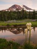 P8013852  Mt Adams.jpg