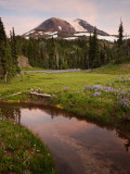 P8013858  Mt Adams.jpg