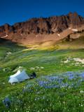 P8044319 Alpine Meadow in the Goat Rocks Wilderness.jpg