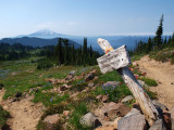 P8054441 PCT Trail junction, Mt Adams in the distance.JPG