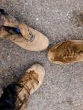 P8074815 Trail Shoes.jpg
