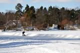 Snow and ice on the trees around Långsjön
