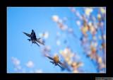 061028 Blue Angels 03E.jpg