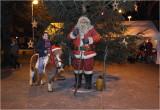 Kerstmarkt Lommel Kolonie