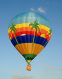 Tropical hot air balloon