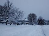 Nureyev Lane in the Snow