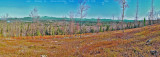 Annotated North View Panorama - courtesy of dcr