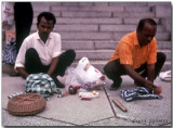Snake charmers setting up