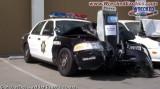 police.bmp