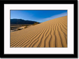 Ripples of Sand Dune