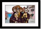 Family of Masks