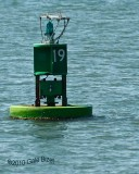 Bouy Canaveral inlet 3.10.NT0455.jpg