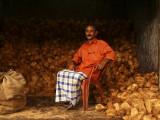 Relaxed market man.jpg