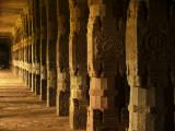 Row of pillars Trichy.jpg