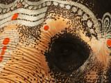 Elephant eye Kanchipuram.jpg
