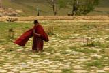 Boy monk in courtyard