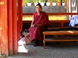 Monk at Meru Sarpa Monastery in Lhasa
