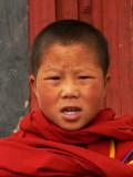 Portrait of a boy monk
