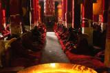 Golden rim in Drepung