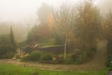 2h30m in a friends garden