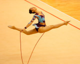 Gymnastic1138.jpg