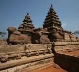 Temple Ekambeshvra