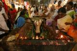 Cérémonie annuel temple Meenakshi