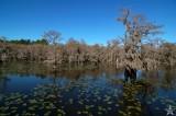 Saw Mill Lake