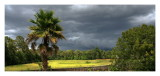 storm-lightroom-4.jpg