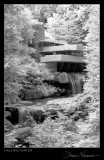 Falling Water 2009 | Pennsy