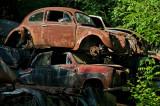 An amazing vintage car dump