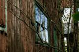 Silently abandoned